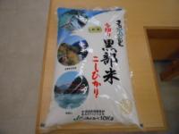 Kurobe rice