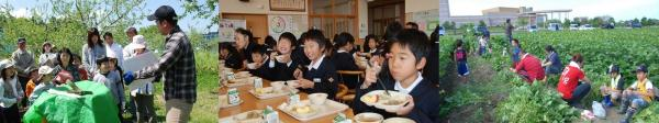 Food education activity 3