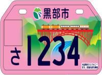 Pink number plate. png