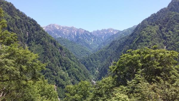 Panoramic opening state