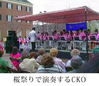 桜祭りで演奏するCKO