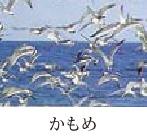 市鳥カモメ