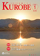 Public information cover